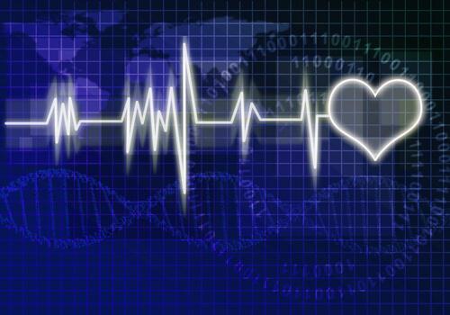 MimascotaCBD-cannabis-riesgo-cardiovascular